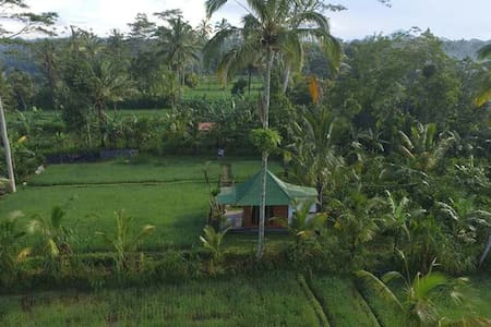 Lovely Rice Field Cottage