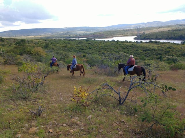 Horse Riding ranch scenic adventure - Los Sauces - Bed & Breakfast