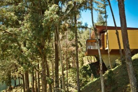 Hermosa Cabaña En Guatape Antioquia