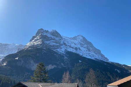 Apartment Beauty, Chalet Betunia, Grindelwald