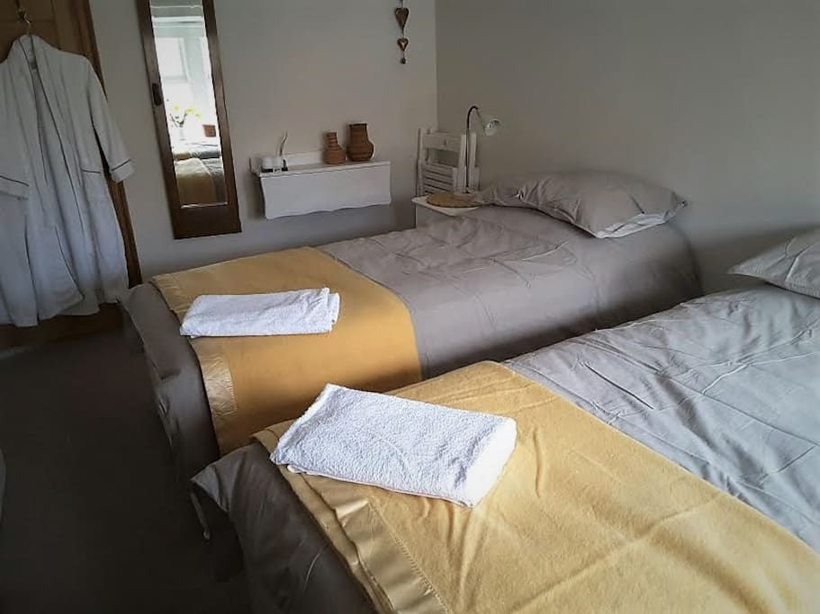Your room with two 3 ft single beds