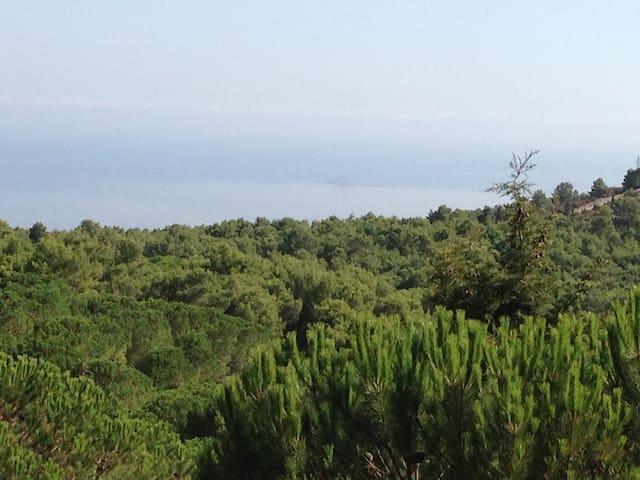 Villa in collina vista sul golfo - Carini - Villa