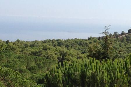 Villa in collina vista sul golfo - Carini