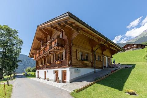 """""""Bergtraum"""" Grindelwald"""