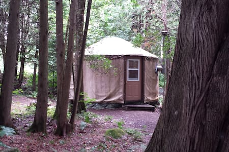A Yurt in the Forest - Barry's Bay