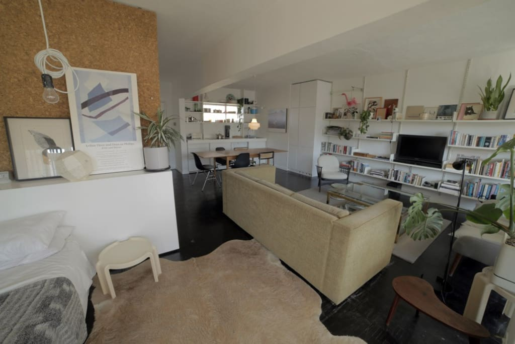 Open plan kitchen, dining, lounge, and sleeping area