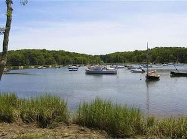 Arey's Pond (rent Stand Up Paddle boards-SUPs, kayaks, sailboats, fishing, birding) within walking distance of house.
