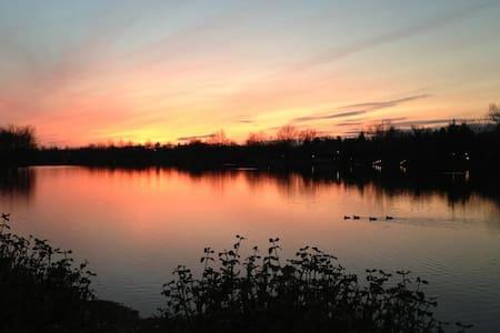 Luxurious Lake Living in Lexington!