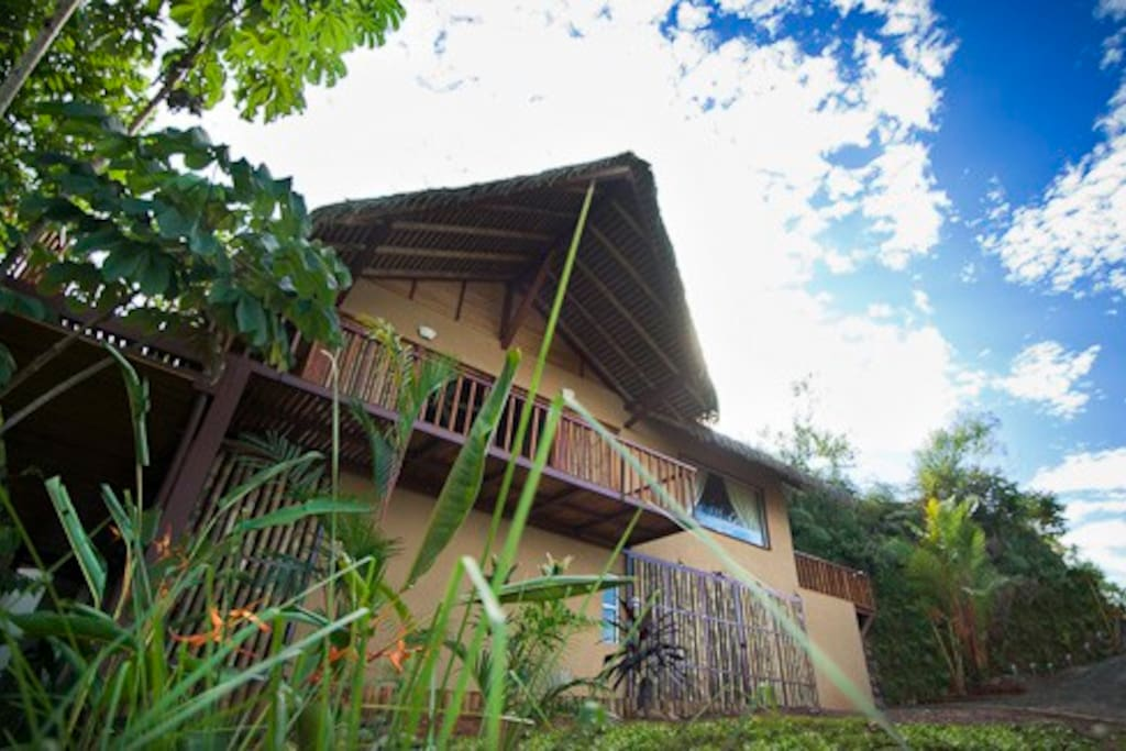 Pura Vida Ecolodge - A Retreat - A Lifestyle - An EXperience. The concept since Day 1 was to nestle our 'Eco-Luxury' Jungle Villa right on the edge of the canopy, while at the same time offering guests magnificent panoramic valley, ocean and sunset views.