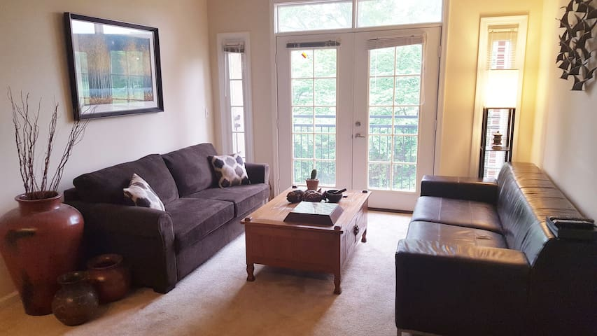 Nice luxury 2 bdr apt in DC area