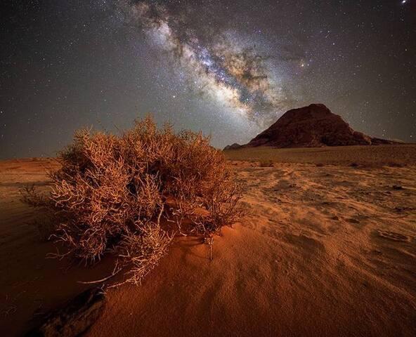 Majed Wadi Rum magic stars camp