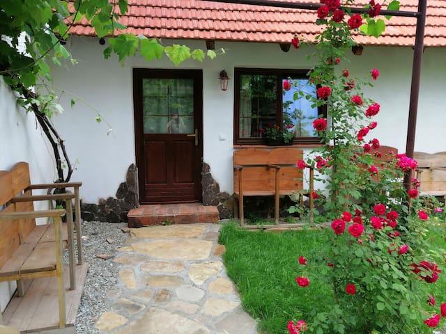 Traditional Transylvanian house 2