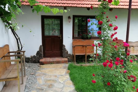 Traditional Transylvanian house 2
