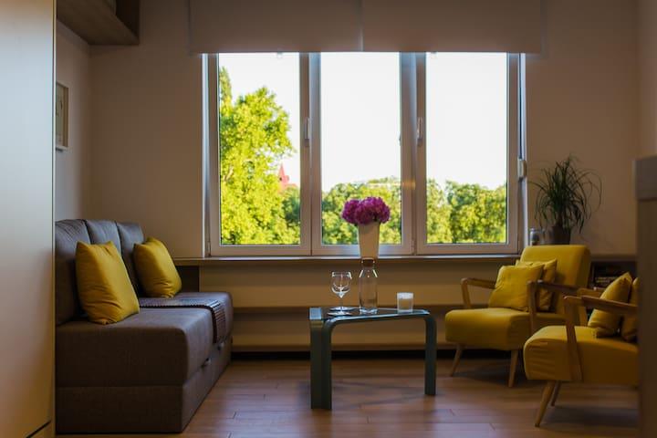 Modern cozy studio with a nice view