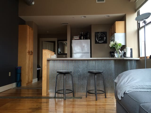 Modern 1 Bedroom Apartment Downtown