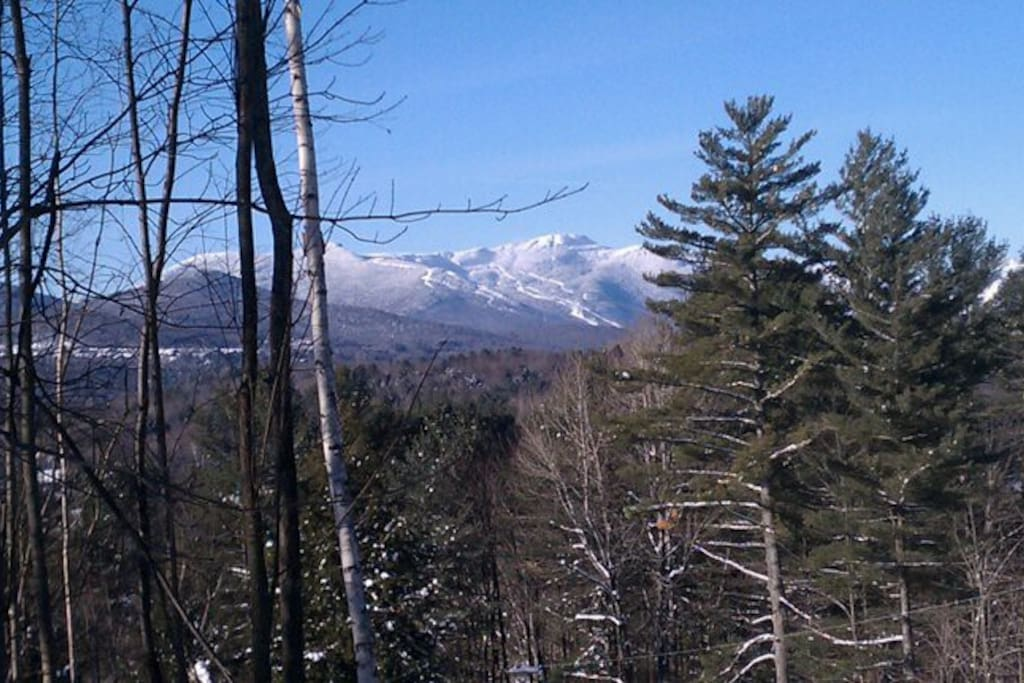 Views of Mount Mansfield, ski trails.