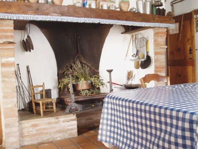 Traditional farmhouse - Rabastens - บ้าน