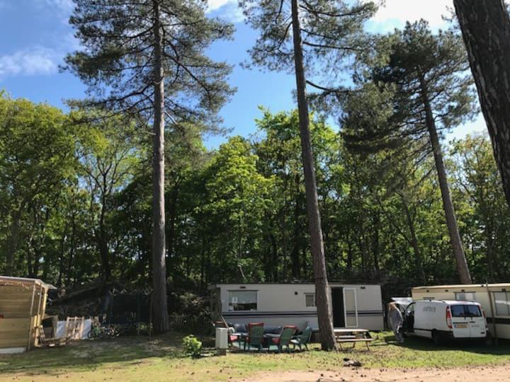 Zonnige  stacaravan Camping Bakkum