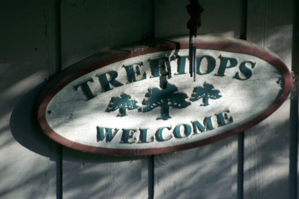 Our home is named Treetops because it sits on a beautiful wooded hilltop