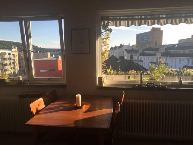 Top floor apt near Munch Museum - Oslo - Apartemen