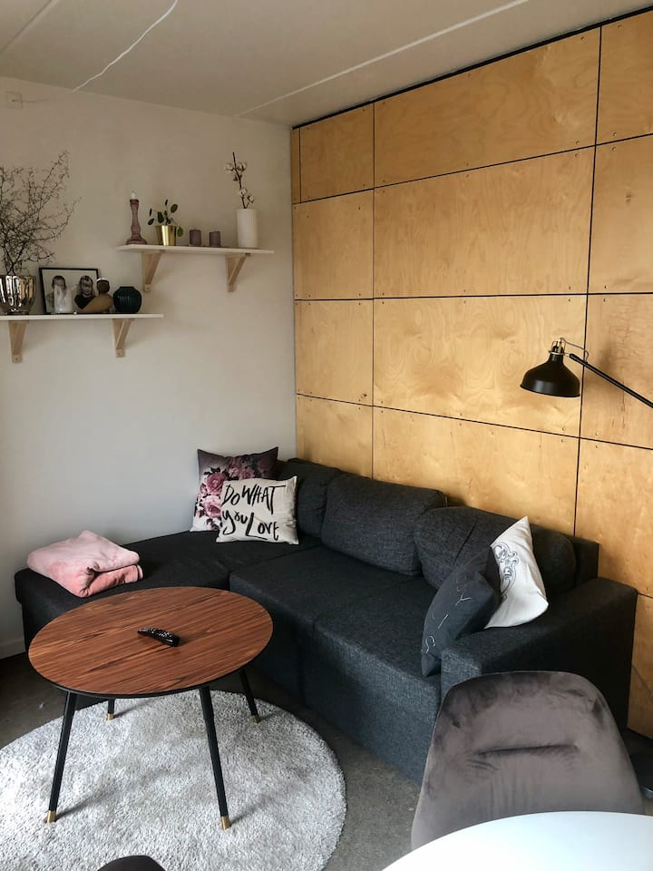 Cozy and centrally located small apartment