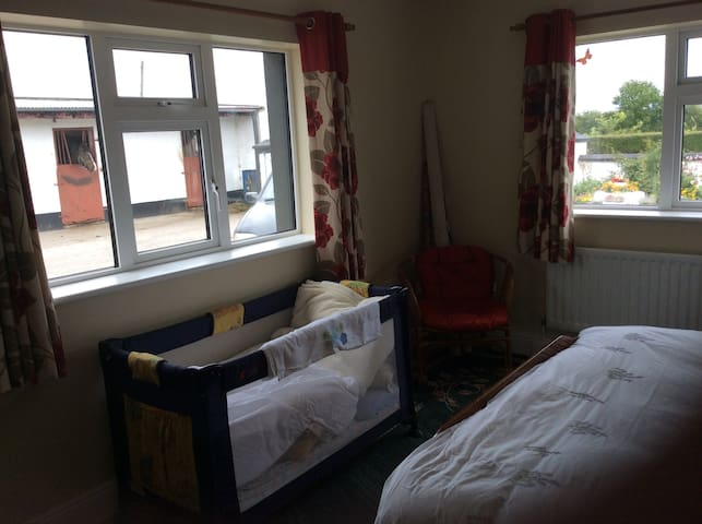 Traditional B&B, lovely room. - Tipperary - Bed & Breakfast