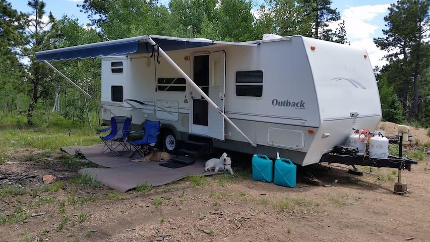 Camper in High Woods