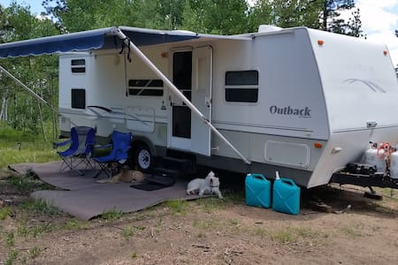 Camper in High Woods - Cripple Creek - Autocaravana