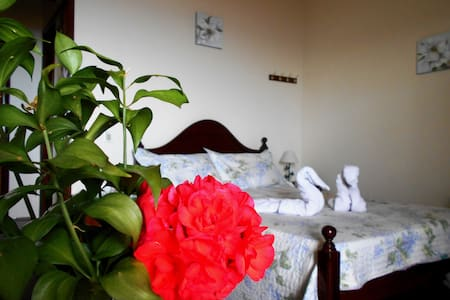 Cozy Family Apartment  - Funchal - Apartment