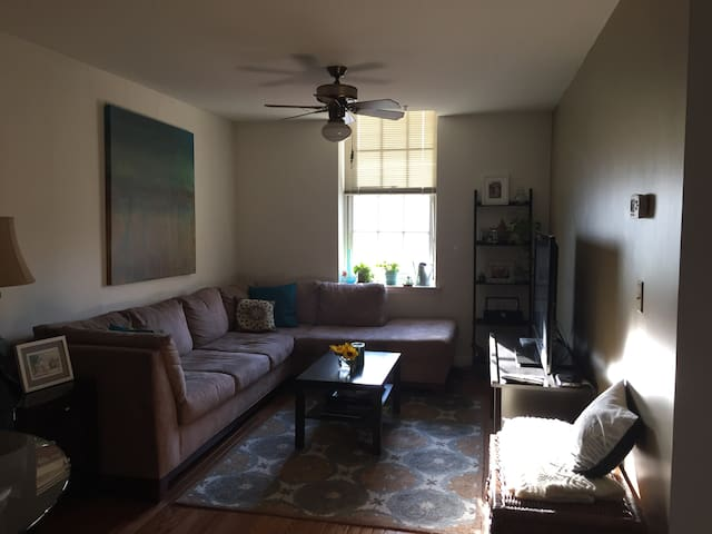 One Bedroom Apartment Old City Apartments For Rent In Philadelphia Penns