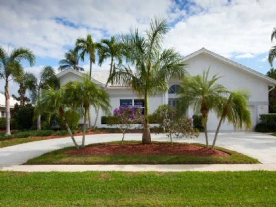Front view: Palm trees, fruit trees and lot of flowers/blooming shrubs around the house