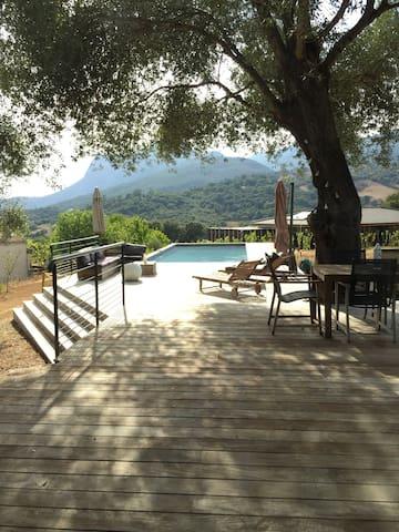 Maison Archi piscine près Ajaccio - Sarrola-Carcopino - Huis
