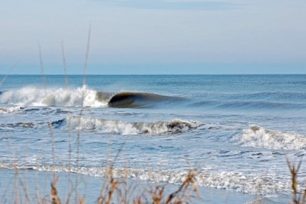 Come capture beautiful pictures of Folly beach scenery, or catch some sick waves!