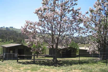 Tullimbar Log Cabin 1