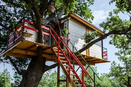 La casa sull'albero - Lentella  - Casa na árvore