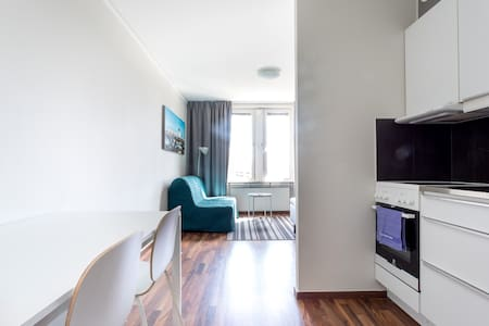 Newly renovated Studio apartment 1