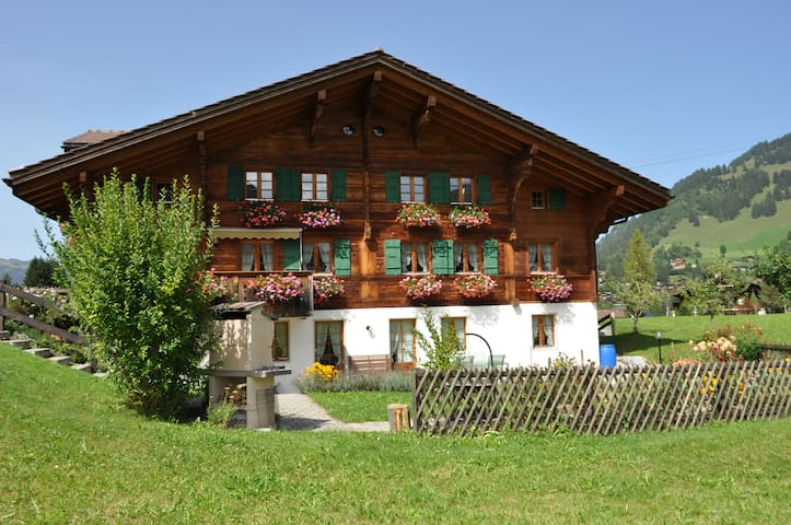 Spiher-Appartment Nr. 5