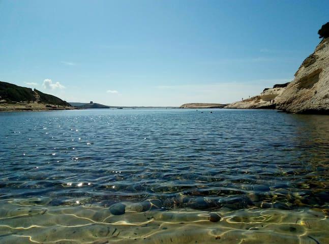 The Sardinian Experience