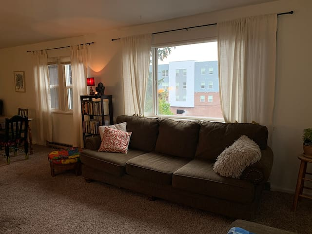 Warm and Comfortable Apartment Located Downtown