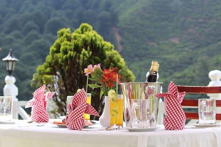 Tea view Accommodations - Nuwara Eliya 1