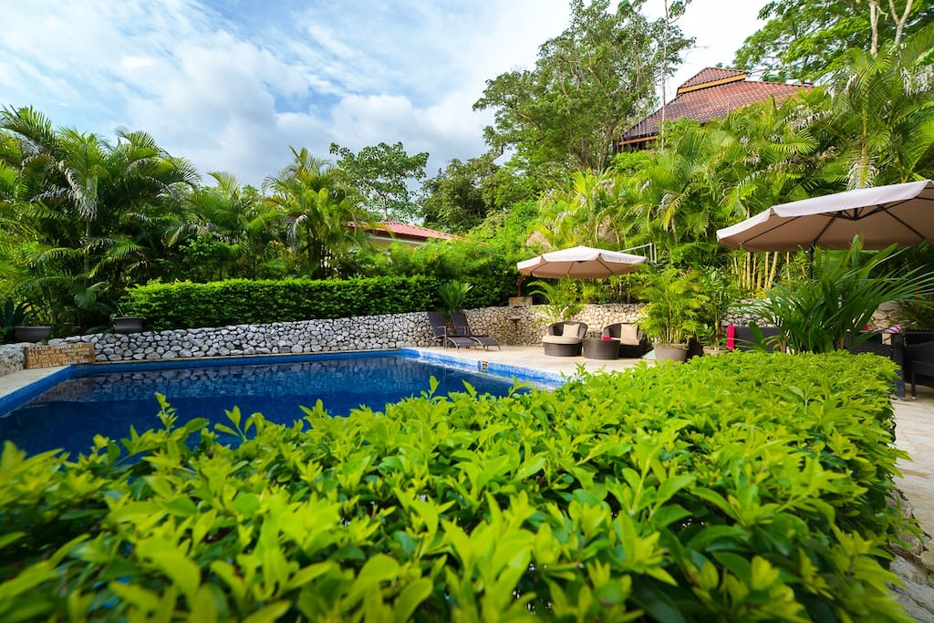 The four bungalows share this deep secluded pool.