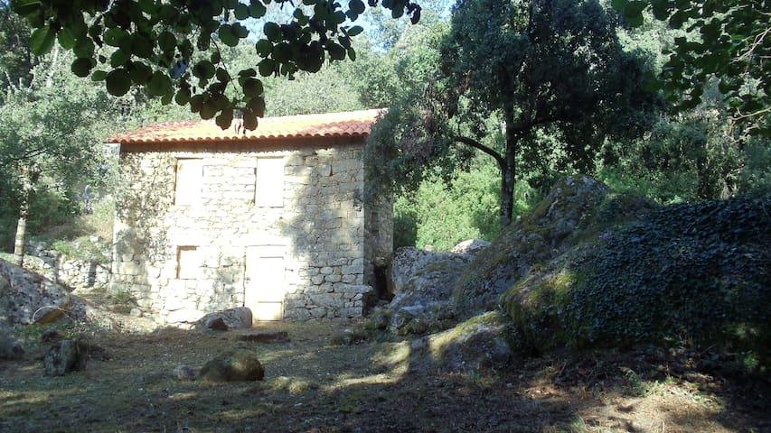 Vieux moulin  rivière, cascade - Peri - Altres