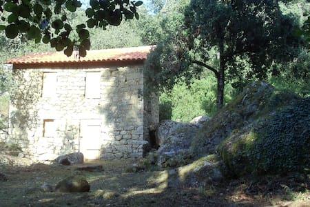 Vieux moulin  rivière, cascade - Peri - Outro