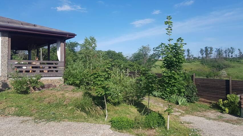 Этнодом с живописным видом в экодеревне Зайцево