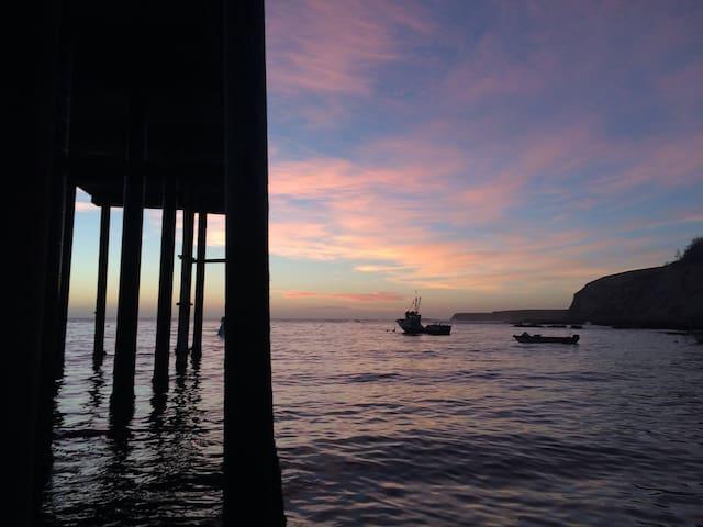 Blake's South Coast Mendocino Favs
