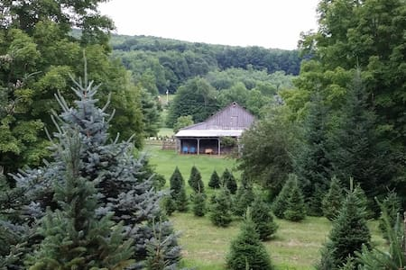Charming Cabin- Beautiful Setting - Shaftsbury - Hus
