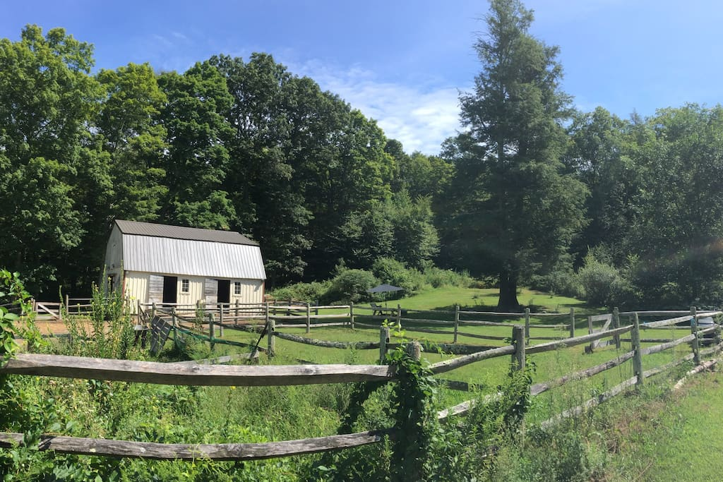 View of barn and our 'Twin Pines' and group camp/ wedding venue sight...