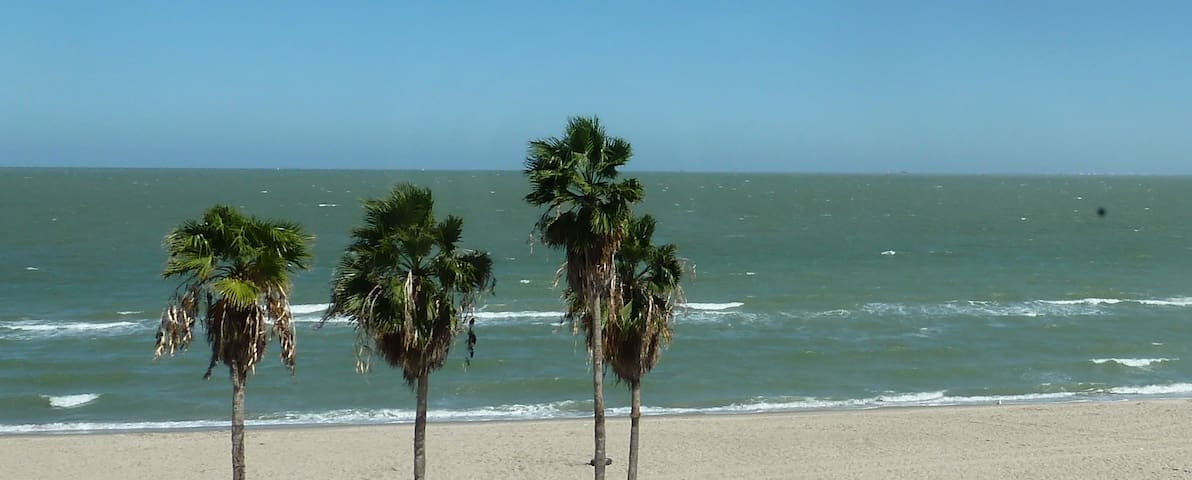 Endless Summer On The Beach - Corpus Christi - Condo