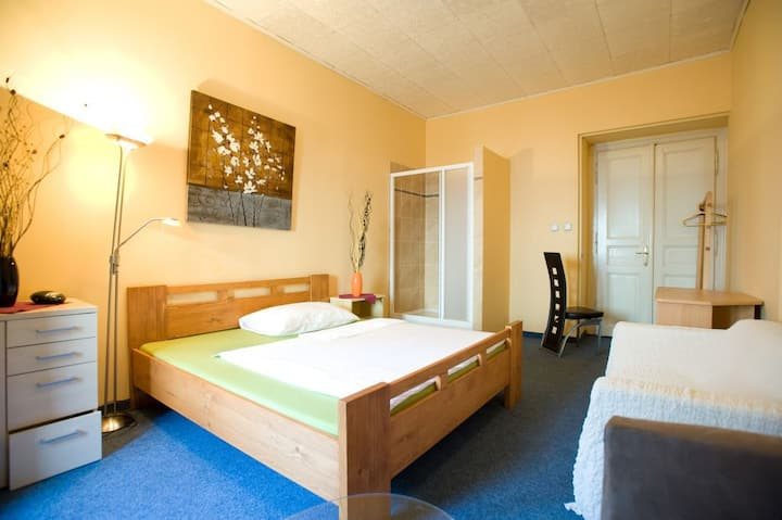 Double room in the centre of Prague