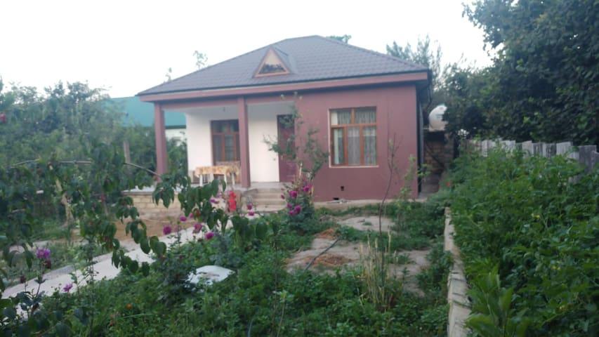 Gabala Guest House